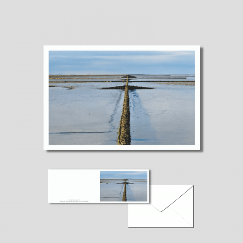 Het wad - vlakbij de pier bij Holwerd